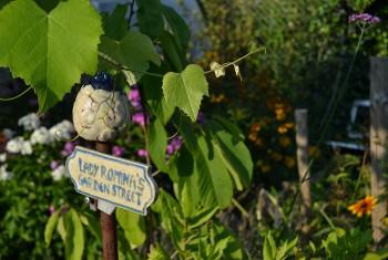 Gartenimpression 10
